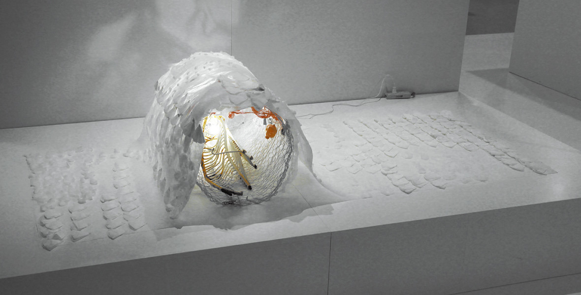 2015 受賞作品|審査員特別賞