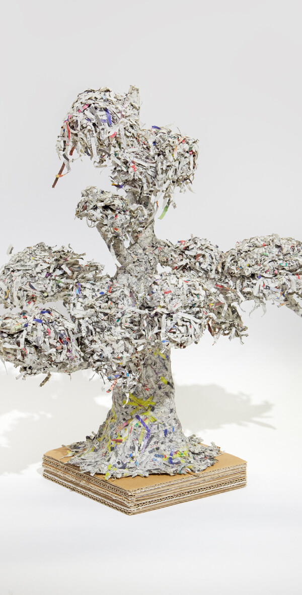 Reclaiming Newspapers into Trees